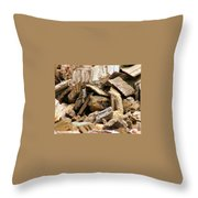 Toadely Throw Pillow