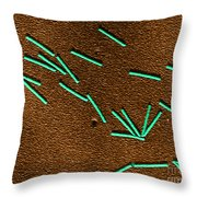 Tobacco Mosaic Virus, Tem Throw Pillow by Science Source