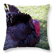 Tommy Turkey Throw Pillow