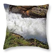 Tongass National Forest Throw Pillow