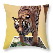 Too Late Dinner Time Throw Pillow