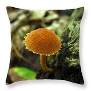 Toothed Powder Cap Throw Pillow