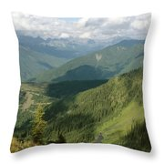 Top Of The World View Throw Pillow