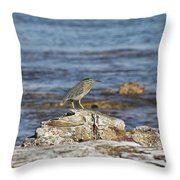 Top Spot Throw Pillow