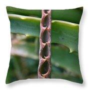 Torch Aloe Symmetry Throw Pillow