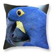 Totally Blue  Throw Pillow