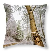 Touch Of Gold Throw Pillow by Debra and Dave Vanderlaan