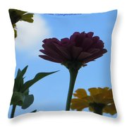 Touch Of Sky Throw Pillow