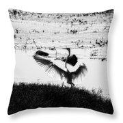 Touchdown-black And White Throw Pillow