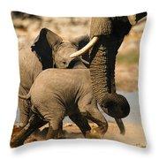 Tough Play 3 Throw Pillow