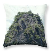 Tourists In Canoes Explore Rainforest Throw Pillow