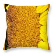 Sunflower -tournesol - Flower Throw Pillow