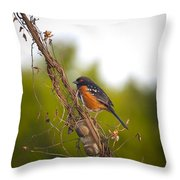 Towhee 2 Throw Pillow