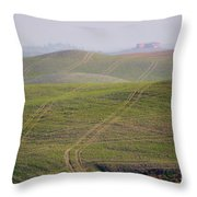 Tracks On The Field Throw Pillow