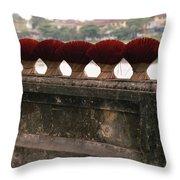 Traditional Hue Throw Pillow