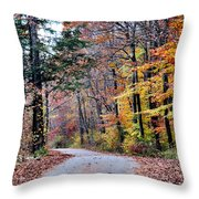 Trail Enlightenment Throw Pillow