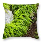 Trail Throw Pillow