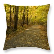 Trail Scene Autumn Abstract 1 Throw Pillow