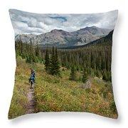 Trail Through Bear Country Throw Pillow