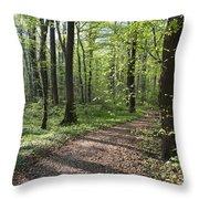 Trail Through Spring Forest Bavaria Throw Pillow