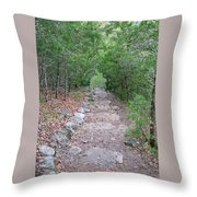 Trail To Peace Throw Pillow