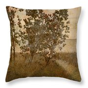 Trail To The Summer Beach Throw Pillow