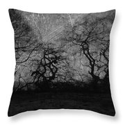 Trails Of Taken Throw Pillow