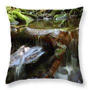 Tranquility Above Dali Throw Pillow