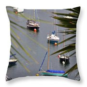 Tranquillity Two Throw Pillow