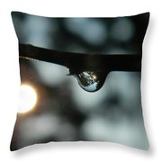 Transformation Of The World Throw Pillow