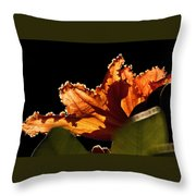 Translucent Throw Pillow