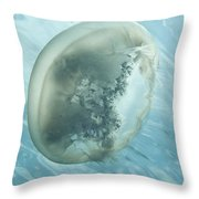 Translucent Jellyish Floating Throw Pillow