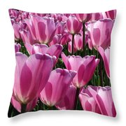 A Field Of Translucent Tulips Throw Pillow