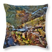 Transparent Tranquility  Throw Pillow