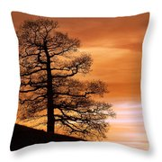 Tree Against A Sunset Sky Throw Pillow