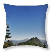 Tree And A Panoramic View Throw Pillow