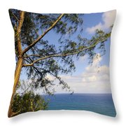 Tree And A Tropical Beach Throw Pillow
