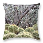 Tree And Barrel Cactus Throw Pillow