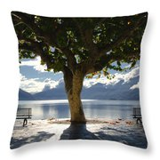 Tree And Benches Throw Pillow