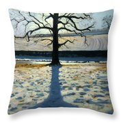 Tree And Shadow Calke Abbey Derbyshire Throw Pillow