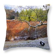 Tree And Tire Swing In Winter Throw Pillow