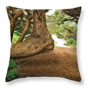 Tree And Trail Throw Pillow