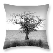 Tree And Water Throw Pillow