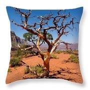 Tree At Cedar Ridge Throw Pillow