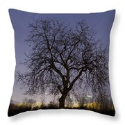 Tree At Night With Stars Trails Throw Pillow
