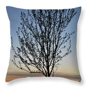 Tree At Sunset Throw Pillow
