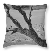 Tree Branch And Footprints On Sleeping Bear Dunes Throw Pillow