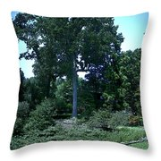 Tree By A Pond Throw Pillow