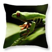 Tree Frog 13 Throw Pillow