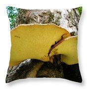 Tree Fungus 2 Throw Pillow